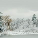 A journey away it is still winter;