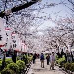 一日の鎌倉旅・2
