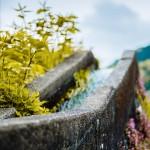 水路と果樹園