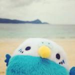 Tiny vacation